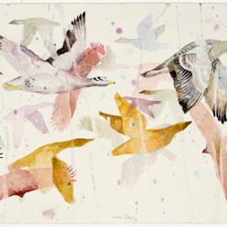 Snow Geese, 220 X 570 Mm, Watercolour On Paper, 2012